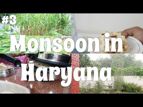 Monsoon in Haryana: Indian Vlogs #3
