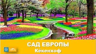 Королевский парк тюльпанов Кёкенхоф в Голландии. Сад Европы Нидерланды(Кёкенхоф - королевский парк цветов в Нидерландах. Также известен как Сад Европы. Роскошный парк с тюльпанам..., 2016-04-06T06:42:28.000Z)