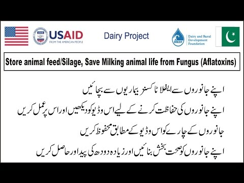 Commercial Dairy Farm! Store Animal Feed, Save Milking Animal Life From Diseases