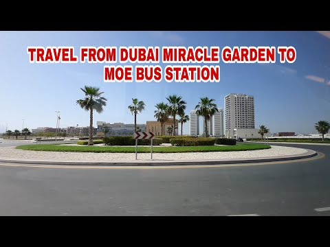 TRAVEL FROM DUBAI MIRACLE GARDEN TO MOE BUS STATION