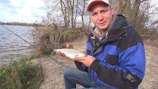 Рибалка на плотву у листопаді на Дніпрі