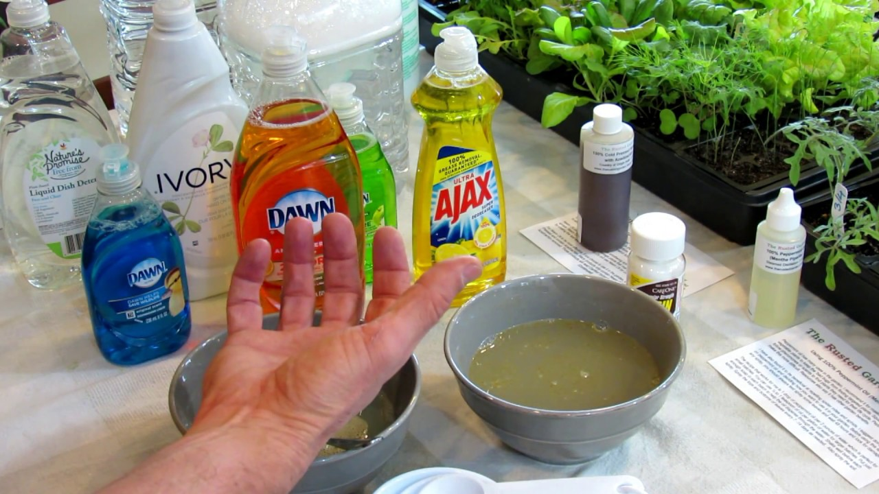 How to Make Soapy Water Garden Insect Sprays: The Recipe, Use & Soap  Selection - DIY Ep-3