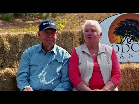 Odom Ranch Testimonials - Owner Appreciation Party