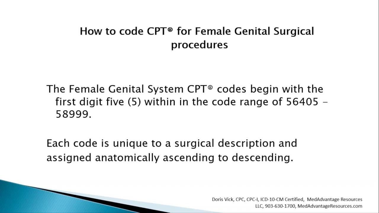 How to code cpt for female genital system surgical procedures how to code cpt for female genital system surgical procedures xflitez Image collections