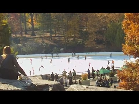Wollman Trump Ice Rink In NewYork City's Central Park