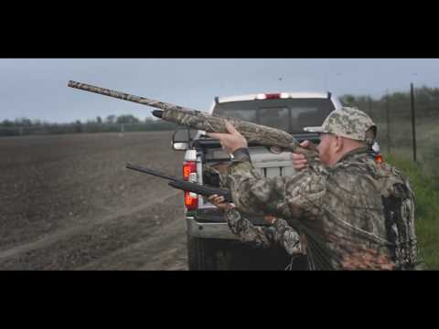 South Texas Dove Hunting- Uvalde Texas Sunflower Dove Hunts