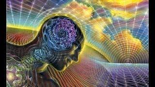 """Семинар от 18 января 2014 г. - """"Потоки Сознания. Реальность и Сон."""""""