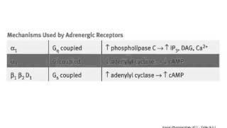 usmle step 1 high yield cardiology adrenergic receptors