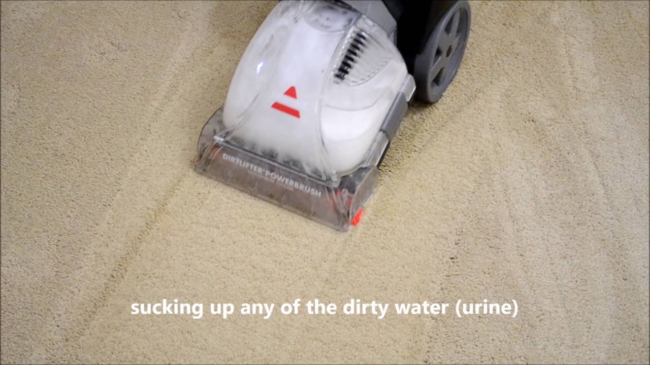 Bissell PowerForce® PowerBrush Upright Carpet Cleaner 76R9W Review Real World Test - YouTube