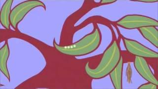Caterpillar life cycle animation