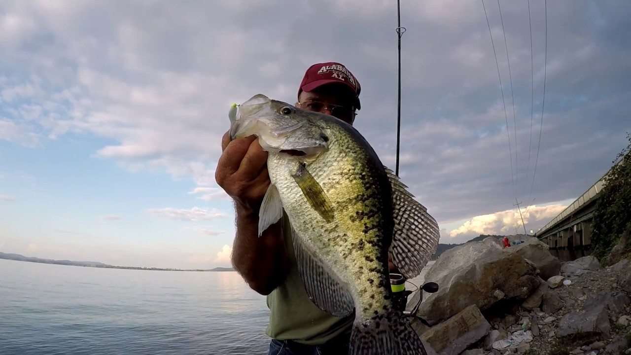 Fall crappie fishing from the bank youtube for Fall crappie fishing
