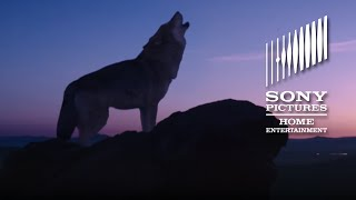 Wolf Totem - OFFICIAL TRAILER