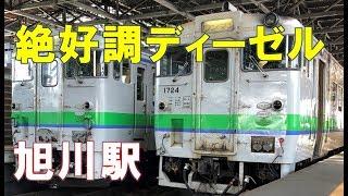 旭川駅のディーゼル絶好調!特急オホーツクとかノロッコ号が元気すぎてわやだべさ。LOVE HOKKAIDO!