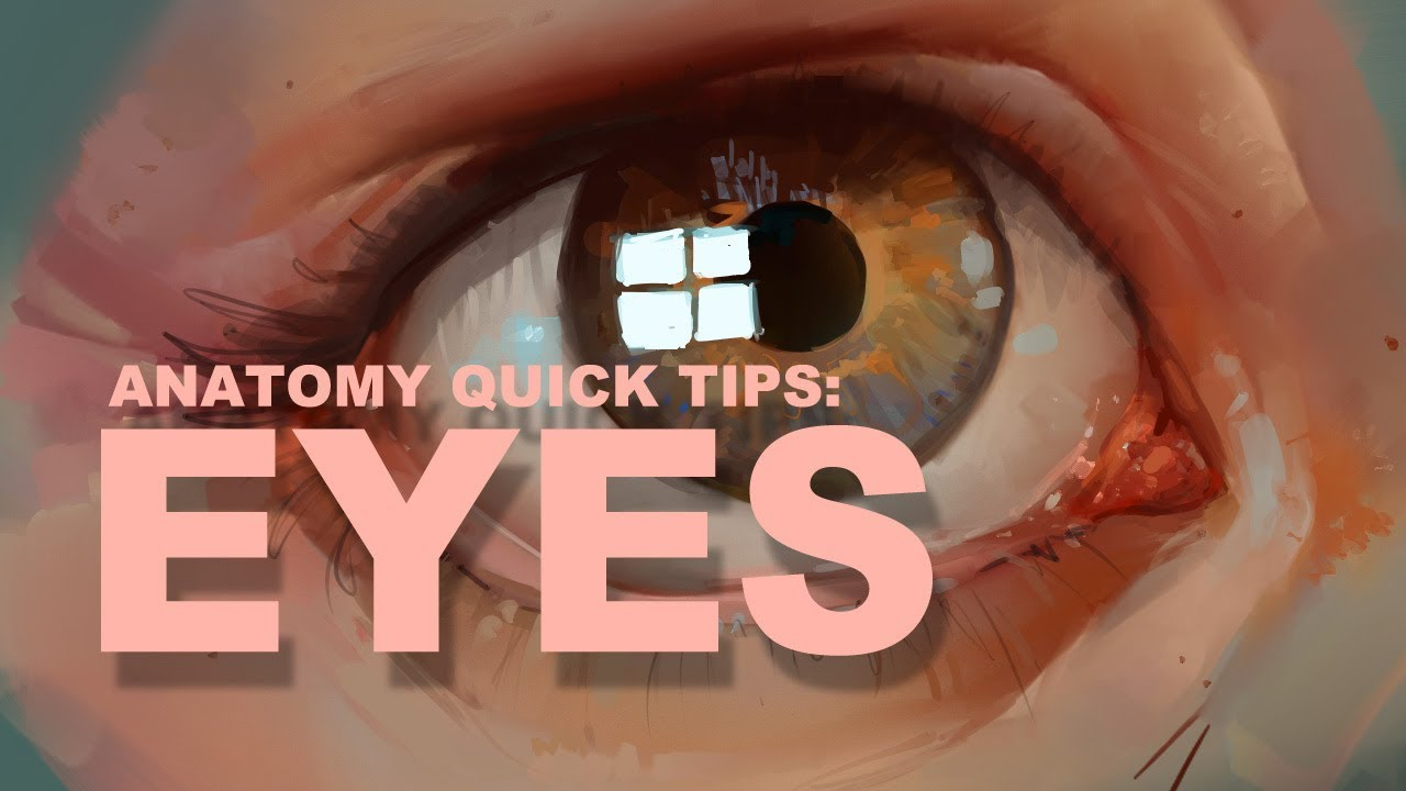Anatomy Quick Tips Eyes Youtube