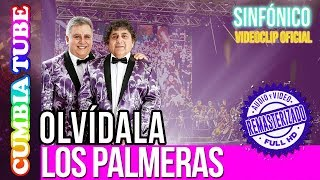 Baixar Los Palmeras - Olvídala | Sinfónico | Audio y Video Remasterizado Full HD | Cumbia Tube