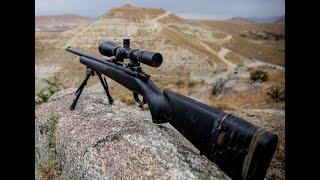 꿩사냥 배틀그라운드 스나이퍼 M24 소음기 air rifle pheasant hunting