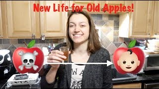New Life for Old Apples!