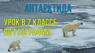 Антарктида. Открытый урок географии 7 класс с ЭФУ #31