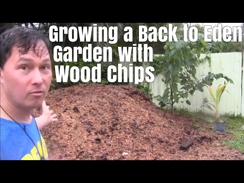 Growing a Back To Eden Garden with Wood Chips