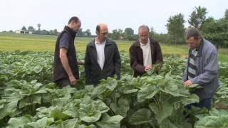 Chambre d'agriculture de Meurthe-et-Moselle / Un pour tous, tous pour un captage !