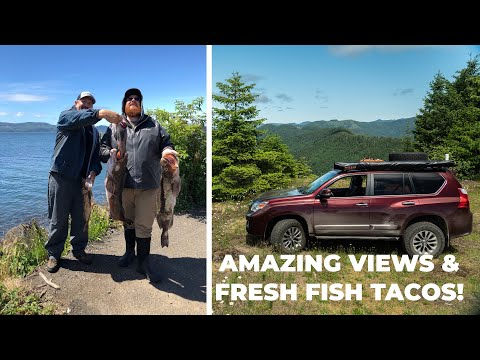 Overlanding Tillamook State Forest & Fresh Fish Tacos On Father's Day!