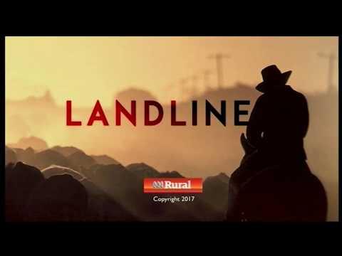 ABC TV Landline  28-5-2017 Rice outro