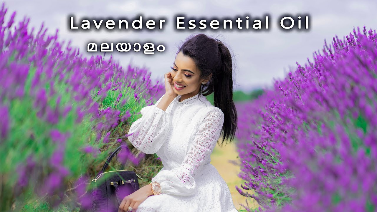 Lavender Essential Oil Benefits and Uses in Malayalam | How to Use Essential Lavender Oil മലയാളം