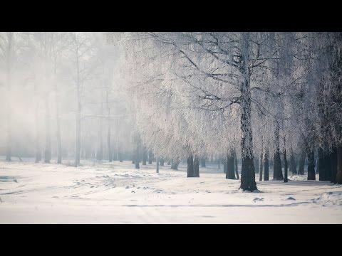 Sad Japanese Music - Falling Snow