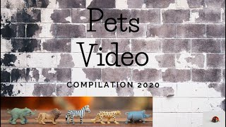 #5 Cute Animals | Funny Pet Video Compilation 2020 | Try not to laugh