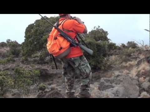 Goat Hunting Polipoli