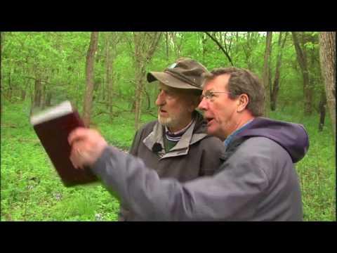 "IL Stories   Henry ""Weeds"" Eilers   WSEC-TV/PBS Litchfield"