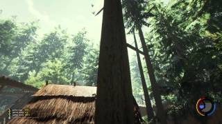 Обложка 006 The Forest 0 34 Skull Island Mit Neuen Bäumen