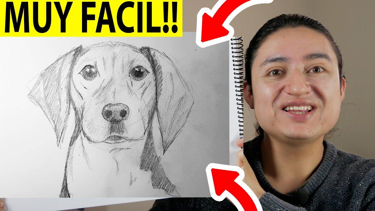 Como Dibujar Un Perro Paso A Paso Realista How To Draw A Realistic