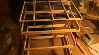 Making A Songbird  Wood Cage 3