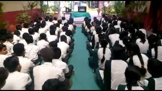 Baixar Sai Shree International School