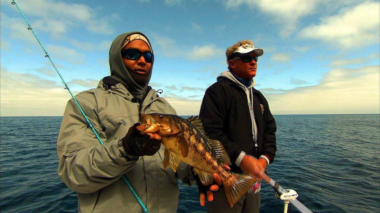 San clemente island california calico bass fishing youtube for Calico bass fishing