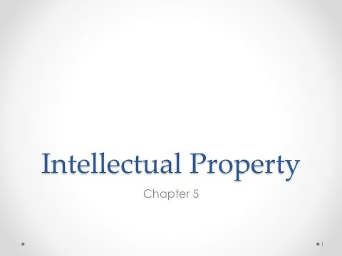 Ch.5 Intellectual Property, Part 1