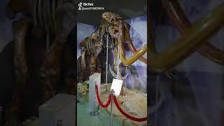 Смотреть видео 2020 01 04 191040506 Краеведческий музей города Азова, Ростовская область. Россия. Путешествия. онлайн