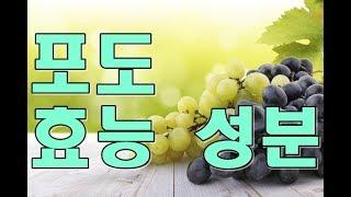포도(Grape)의 효능, 성분