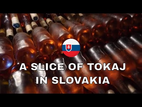 Slovak Wine: Exotic Wine Travel in Slovak Tokaj