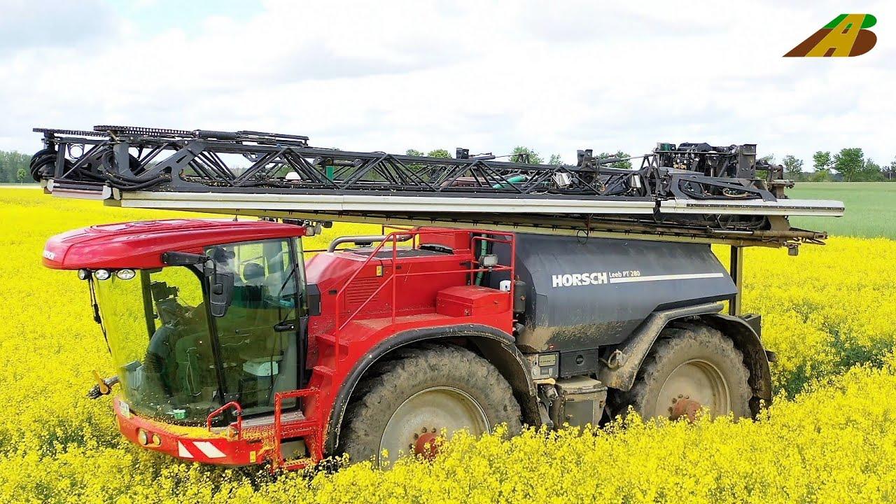 Rapsblüte - Pflanzenschutzeinsatz vs. Pilzkrankheiten - Horsch Feldspritze Landwirtschaft Wärmebild
