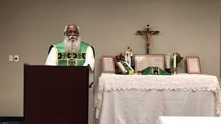 Sermon Father Pancras Sunday November 3, 2019