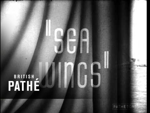 Sea Wings (1939)