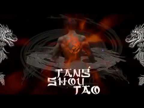 傳統國術實戰-神龍唐手道 熱血招募(Shen-Long Tang-Shou-Tao Admissions )