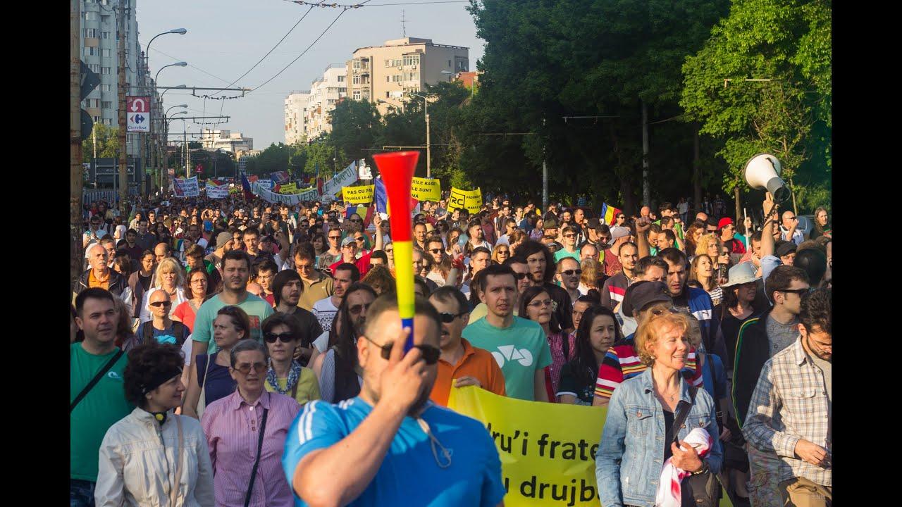 Protest împotriva despăduririlor abuzive / 9 mai 2015 / București