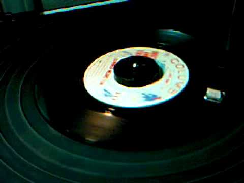Bruce and Terry - Summer Means Fun - 45 rpm