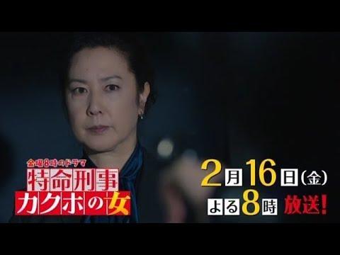 金曜8時のドラマ】特命刑事 カク...