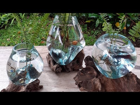 Bali Glass Blowing (Driftwood Fish Bowl)