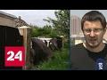 В ЛНР украинские силовики начали наступление