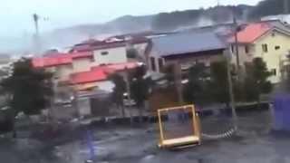 La strana creatura ripresa in Giappone durante lo Tsunami del 2011